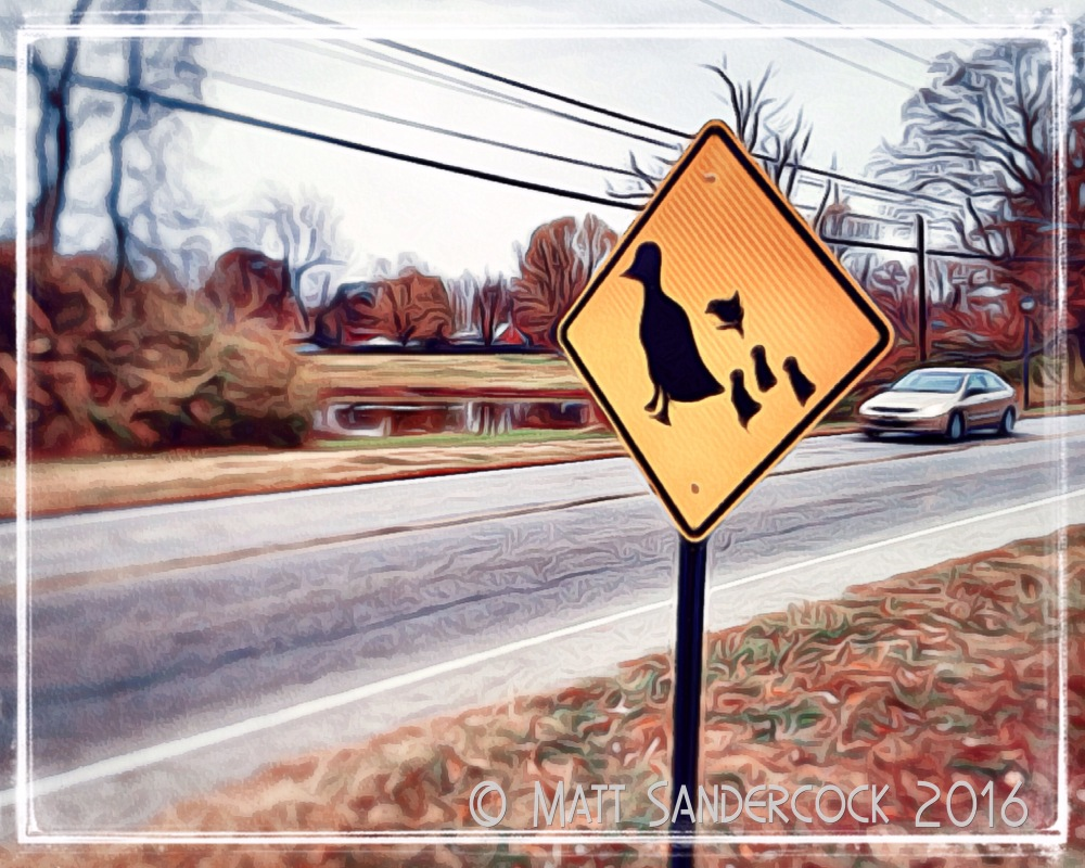 project 366, sign, iColorama, duck, warning sign, crossing